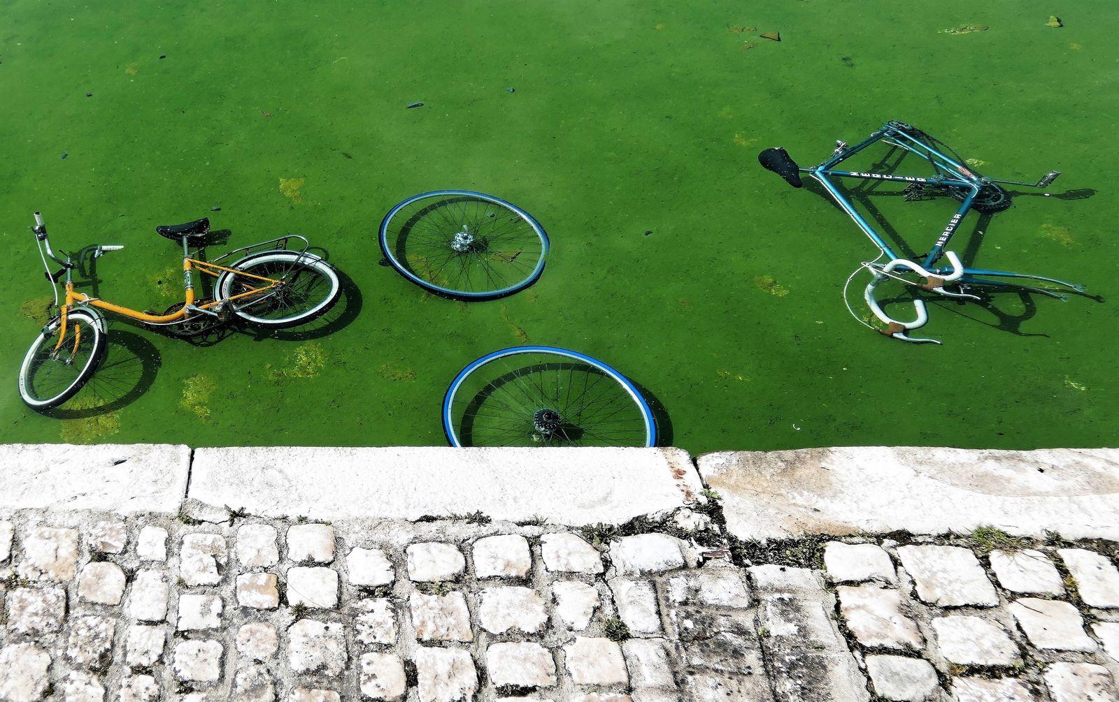 Fin-de-cycle-0078